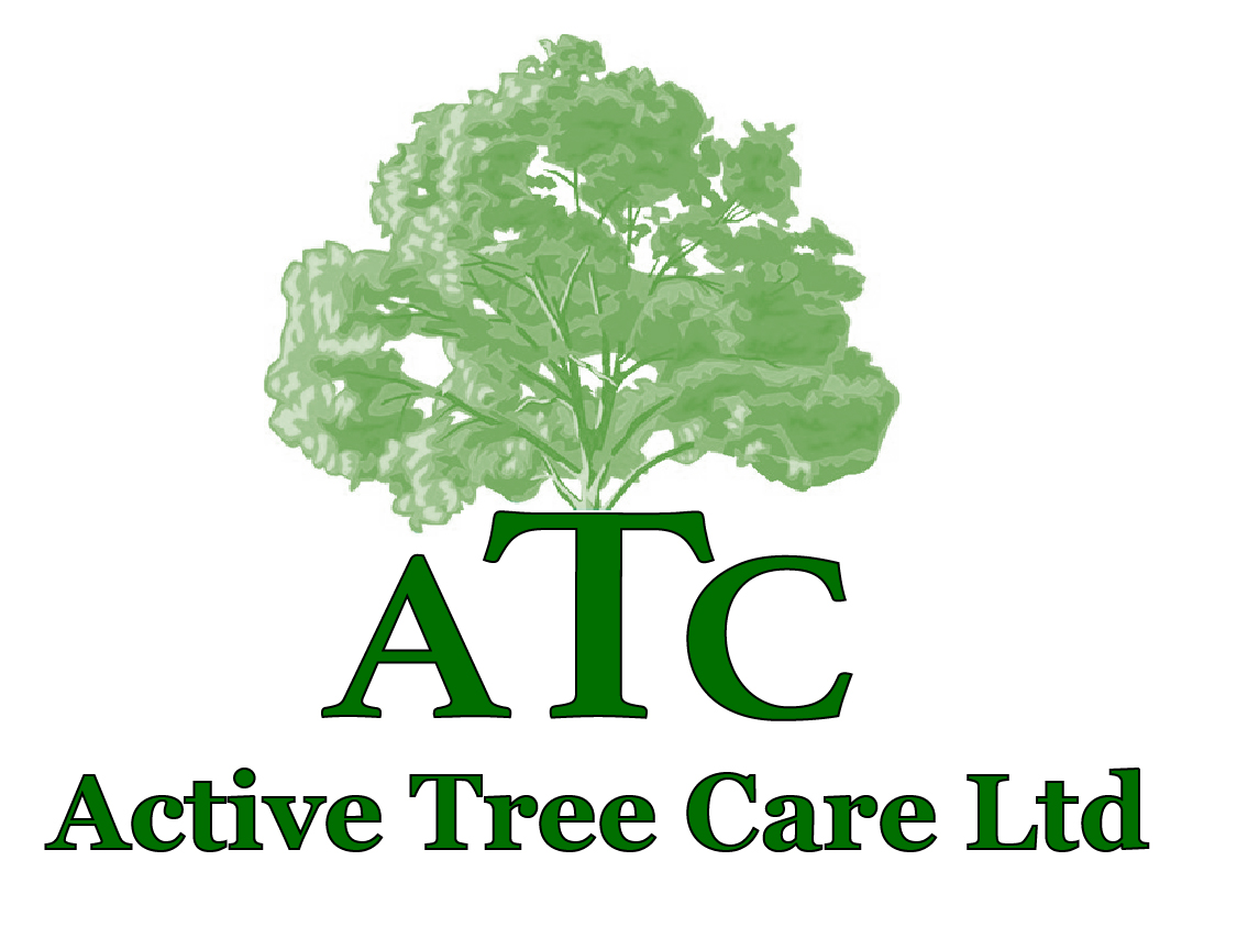active-tree-care