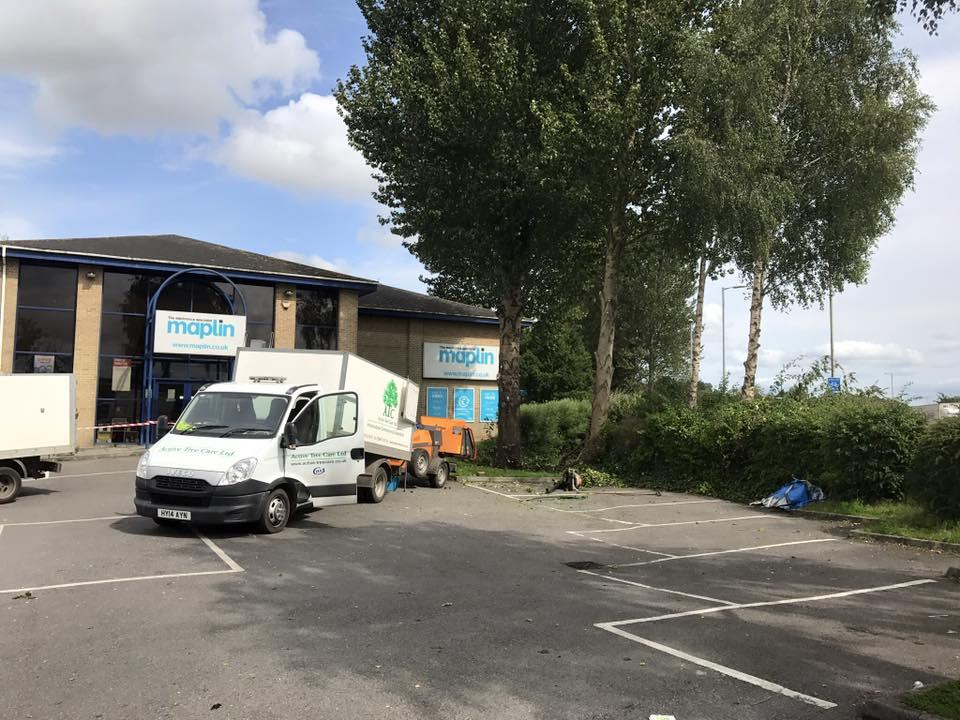 commercial-tree-surgeons-salisbury